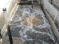 Depuración de aguas- Drencher - Reactor biológico